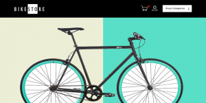 ecommerce website design by dientweb for bikestore
