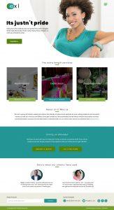 exl corporate website design by dientweb lagos