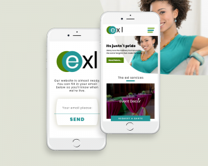exl mobile website design by dientweb lagos website designer
