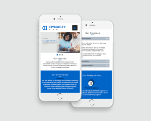 Responsive website design DientWeb