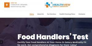 healthview website design